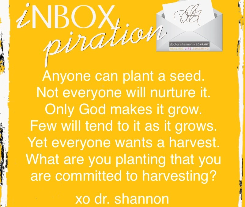 Monday INBOXpiration